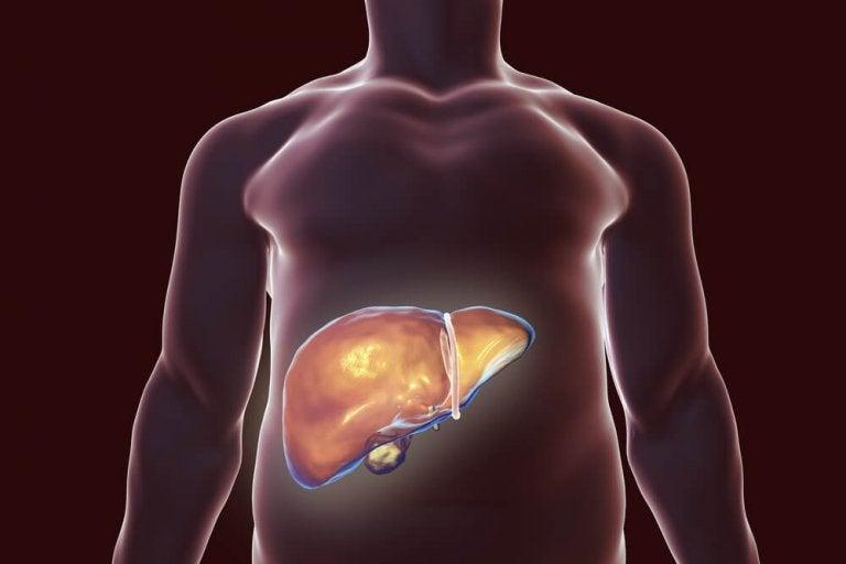 肝臓のデトックスに役立つ自然療法