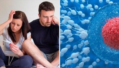 男性の不妊症を改善するためのヒント