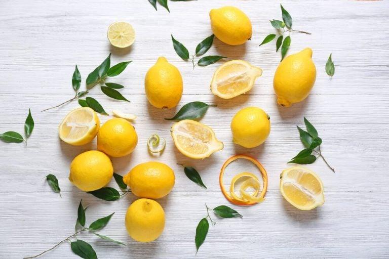 レモンの効能と自然療法レシピ