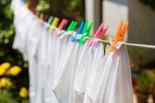 シャツの洗濯 カビを除去する