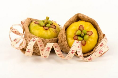 ガルシニアカンボジア:天然のダイエット補助食品