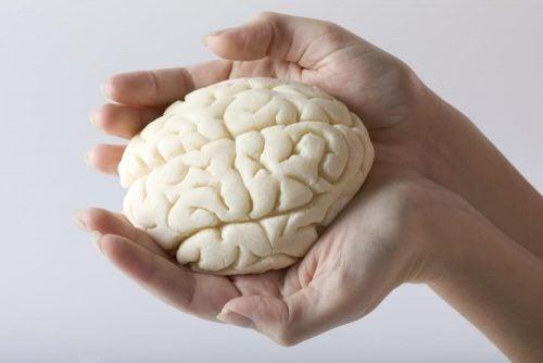 記憶力を向上させるトレーニング5選