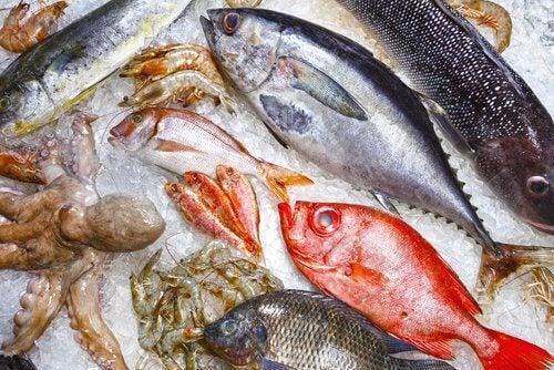 いろんな魚 傷んだ魚を見分ける方法