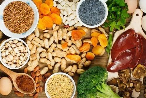 体内の鉄分量を増やす食品