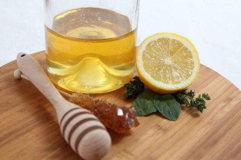 レモン 腎臓結石