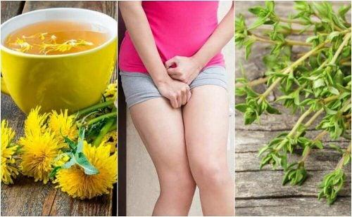 膀胱炎、ハーブを使った5つの自然療法