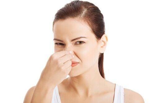 狭いスペースの嫌な匂いを解消してくれる自然の消臭剤2つ