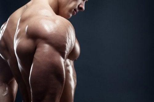 筋肉量をあげる4つの美味しい朝食