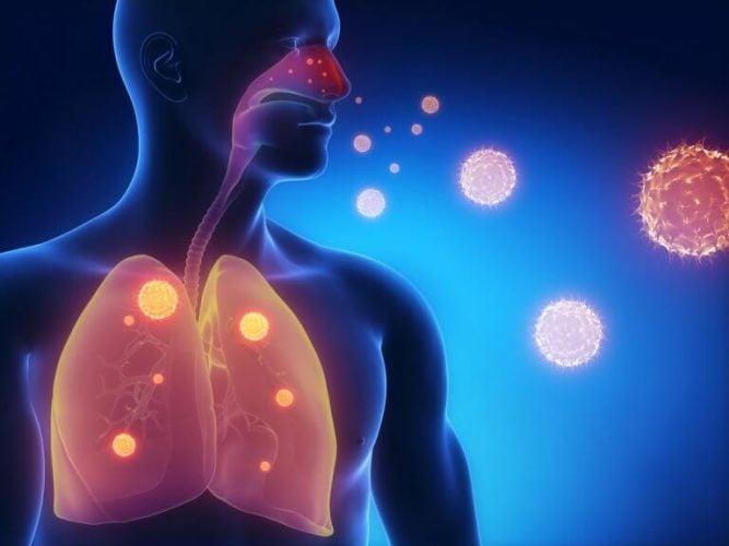 肺と気管 タイム