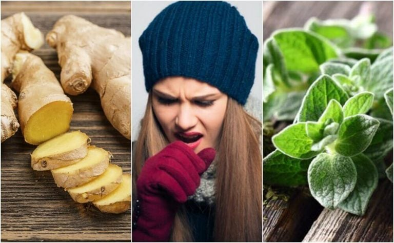 やっかいな痰を取り除くための植物療法ってなに?