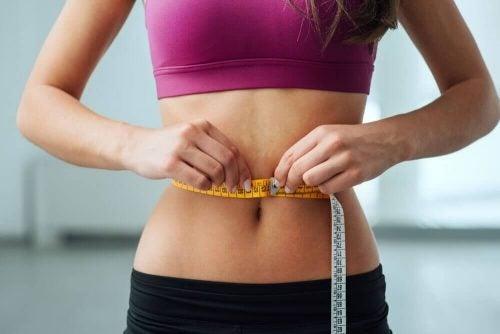 腹部の脂肪