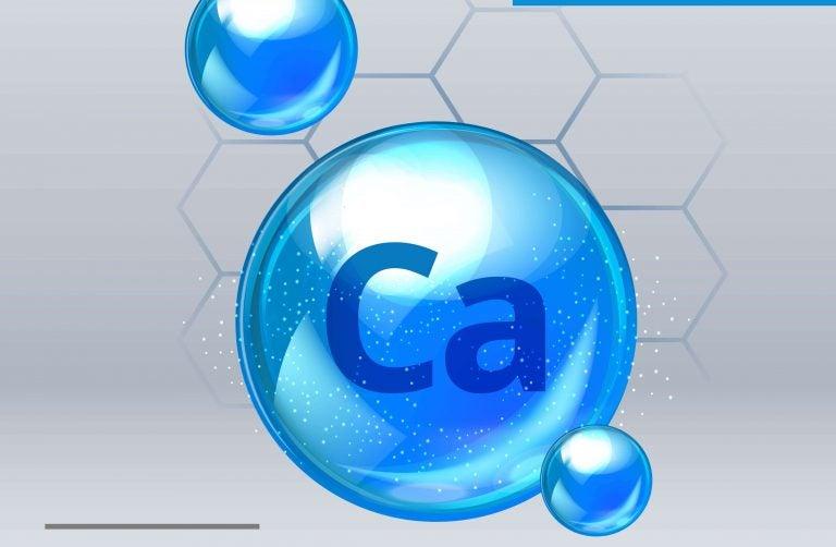 カルシウムたっぷりの植物性食品