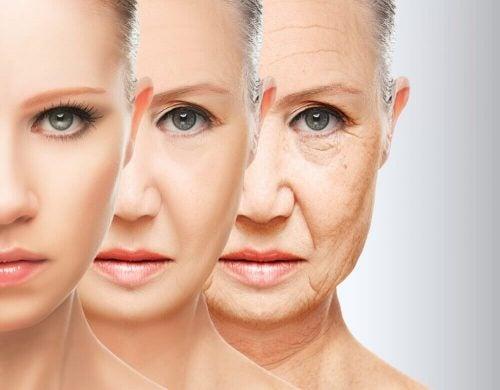 早期老化を防ぐ食生活