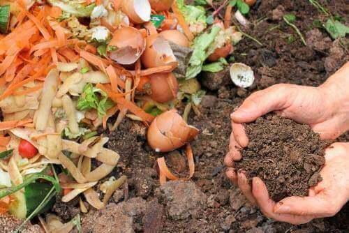 天然の堆肥を作る5つの方法
