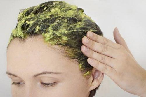 ドライヘア用シャンプー 髪の保湿 卵