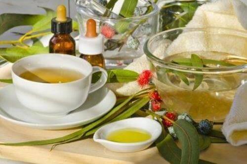 ユーカリの葉のお茶