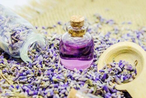 ラベンダーの香りのする芳香剤