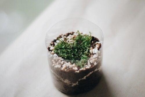 ペットボトルで植木鉢 作り方4種