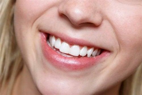 口内の健康