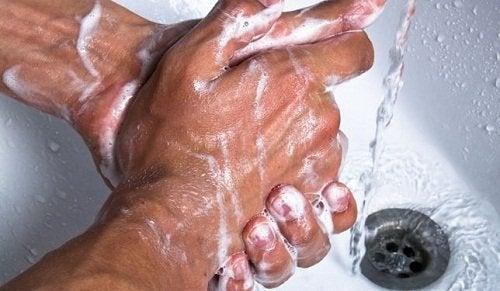 腸管感染症の予防