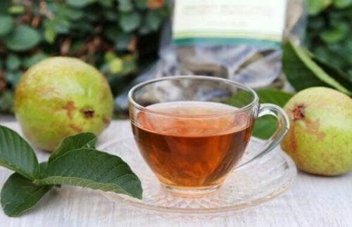 グァバ葉茶
