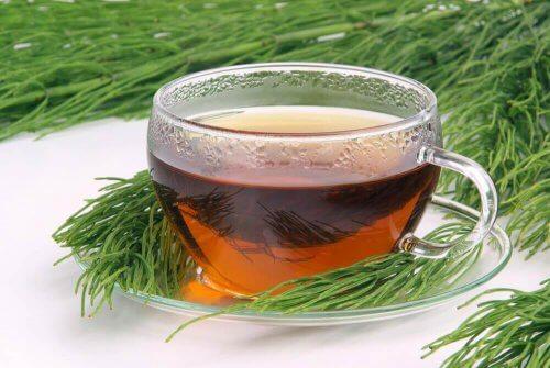 スギナと緑茶