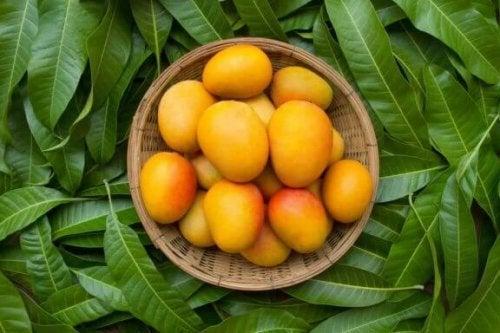 便秘に役立つマンゴの効能と使用法