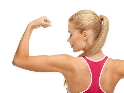 筋肉を作るのに役立つ7つの食べ物