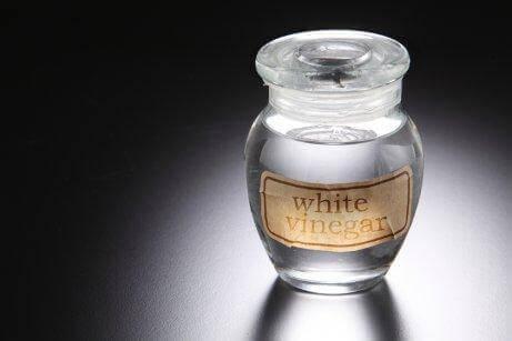 ホワイトビネガー