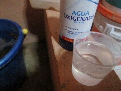 過酸化水素