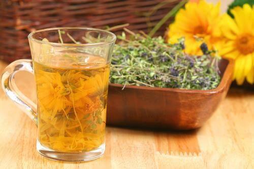 体内のクレンズに効果を発揮するお茶4選