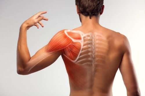 筋けいれんを軽減する7つの家庭療法