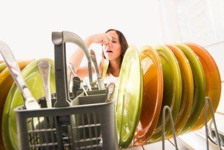 キッチンの雑菌