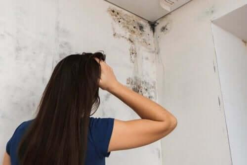 バスルームのカビを取り除く4つの方法