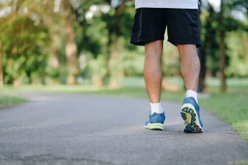 毎日のウォーキングは健康維持に効果バツグン!8つの理由