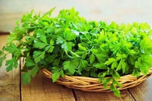 筋肉量を増やすのに役立つパセリ 筋肉量 増加 野菜