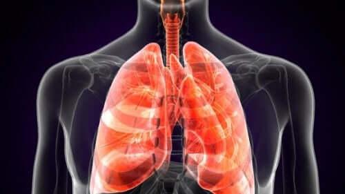 肺ペストについて知っていますか?