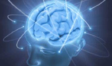 脳を強くするためにできる4つのこと