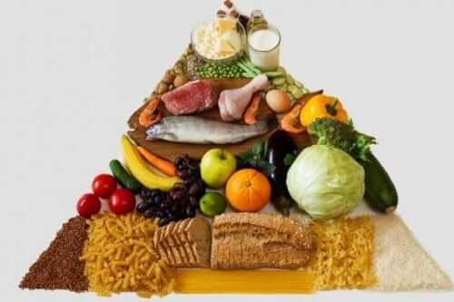 食品ピラミッド 食品栄養表示