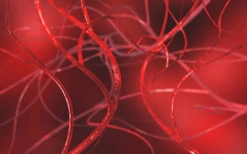 動脈の詰まりを解消する4つの自然療法