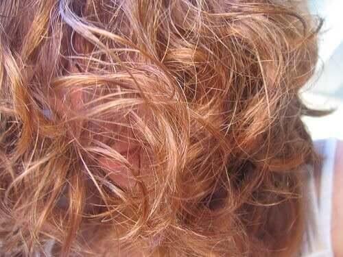 ダメージヘアに効く自然療法