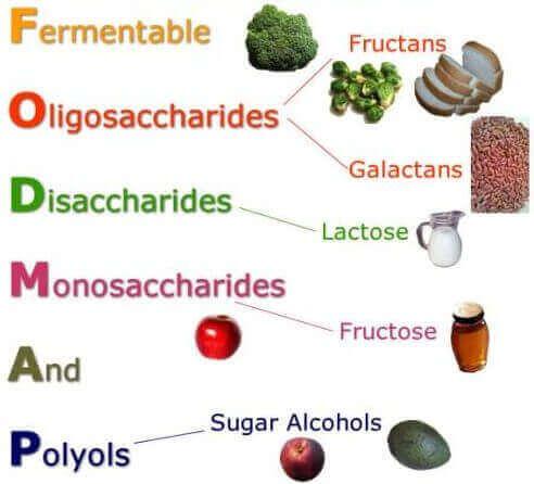 食べ物と栄養