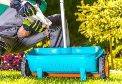 家庭で準備できる肥料で植物に栄養を!