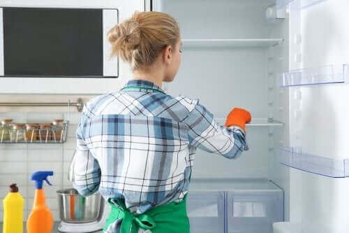 冷蔵庫の掃除と消毒をする環境に優しい方法