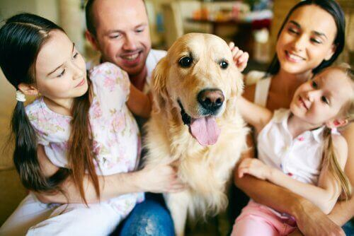 子供がペットの死を乗り越えるのをサポートする方法 ペットは家族の一員