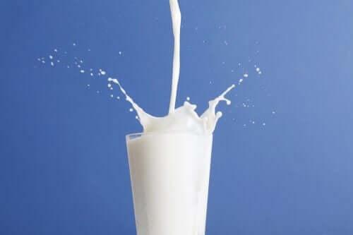 牛乳と低脂肪牛乳:どちらがいいの?