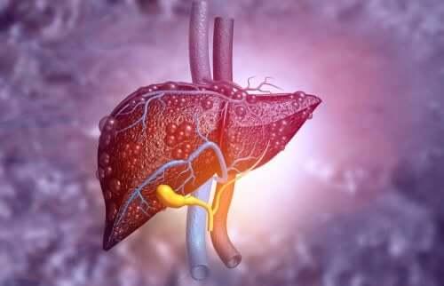 肝臓 HIV治療に使われるアバカビルとその副作用