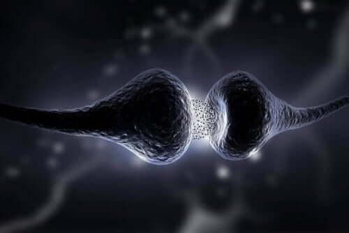 すべてを学ぼう:重症筋無力症について 神経