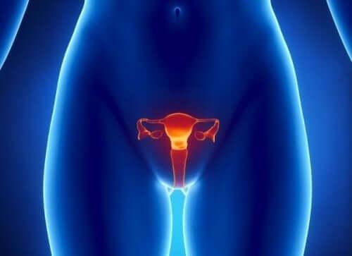 早発卵巣不全(POI)とは何ですか? 症状と診断