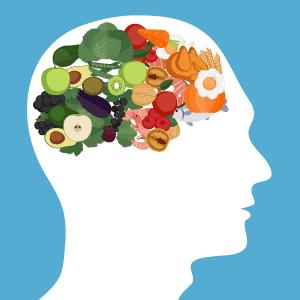 低炭水化物ダイエット:知的活動と感情面への影響 脳への影響